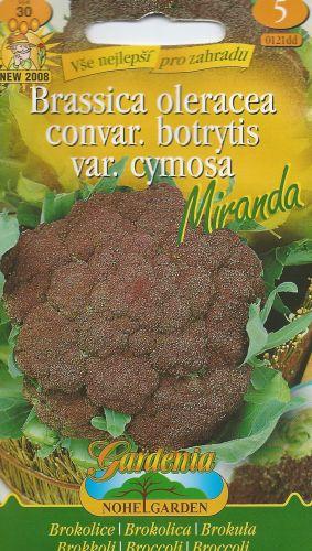 Brokolica MIRANDA