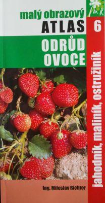 Atlas odrôd ovocia - jahody, maliny a černice